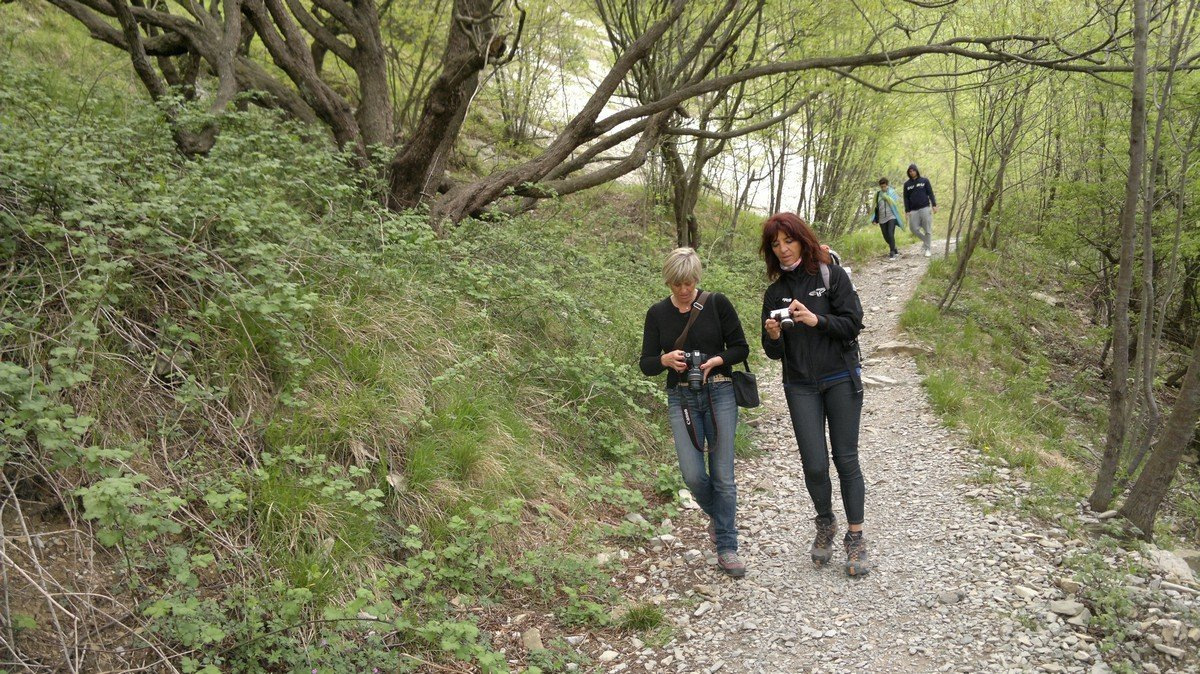 Corso piante officinali - Gita Righi.