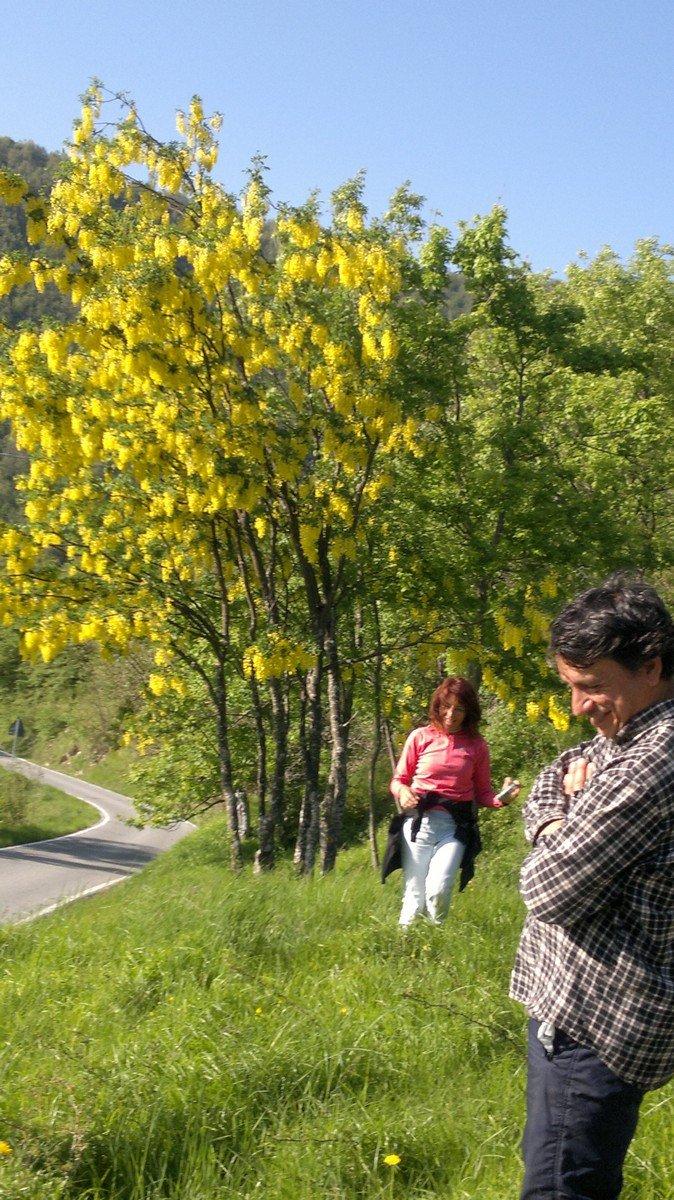Corso piante officinali - Gita Vallenzona.