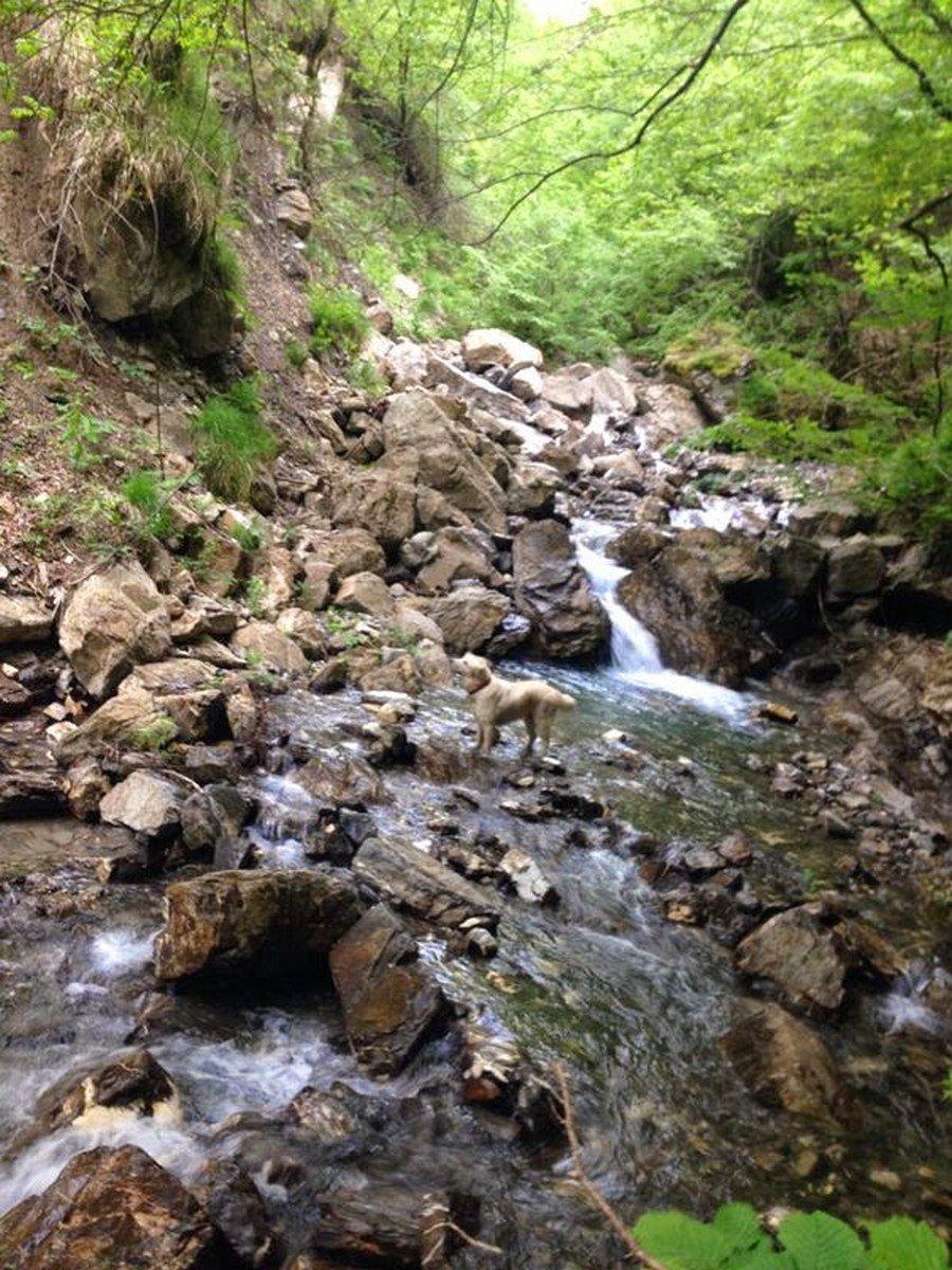 Escursione percorso avventura Vallenzona