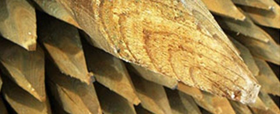 pali legno di pino impregnati