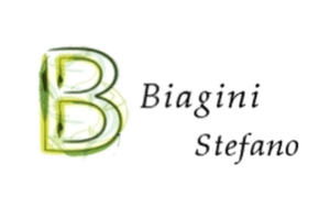 Biagini Stefano