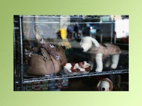 Accessori e borse per cani e gatti