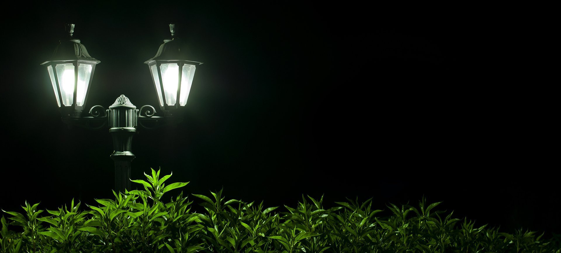 Lighting experts