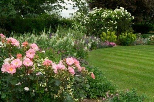 Potatura siepi, piante e fiori