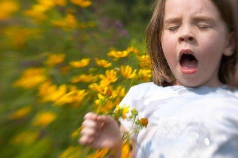 Allergie da inalanti