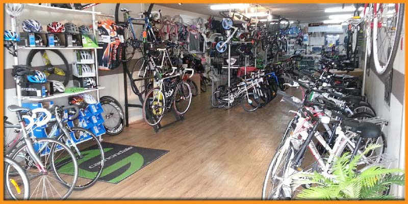 south east cycles bikes on shelves long view