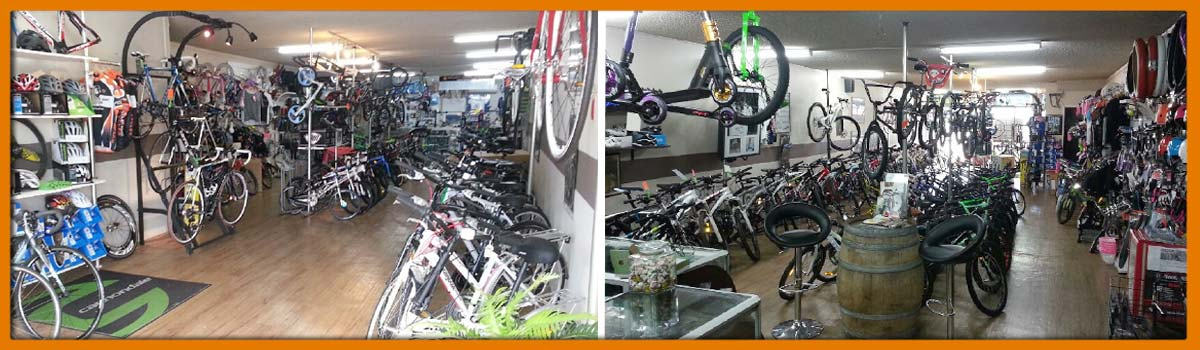 south east cycles bikes on shelves