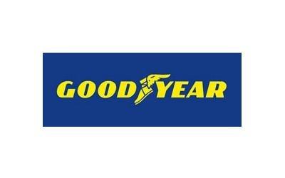 vendita e distribuzione pneumatici