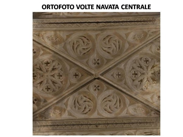 photographic survey: orthophoto of the central nave