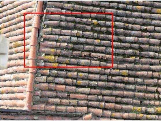 Detail of deteriorated roofing tiles