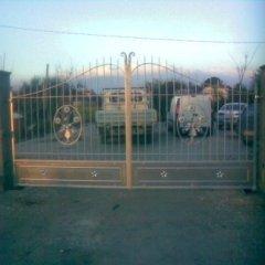 Cancello in ferro con decorazioni