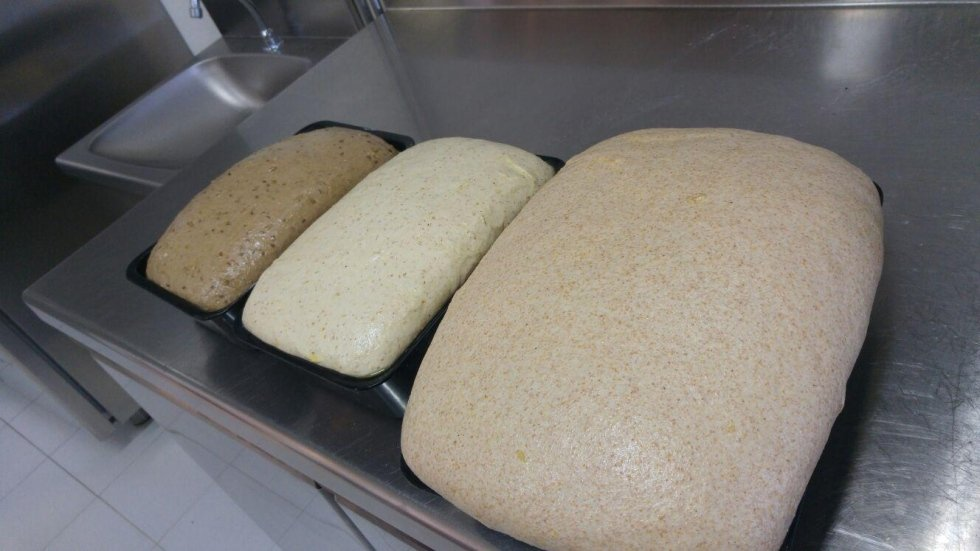 pane e focaccia concordia sagittaria