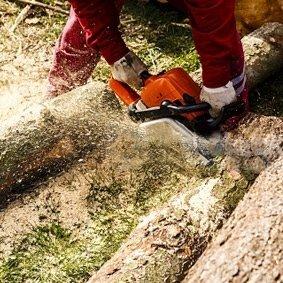 Lavori aree forestali