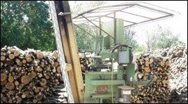 legna formato su misura