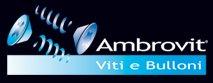 logo - ambrovit