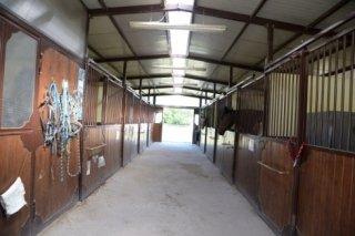 interno delle stalle