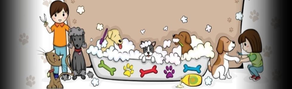 tolettatura cani