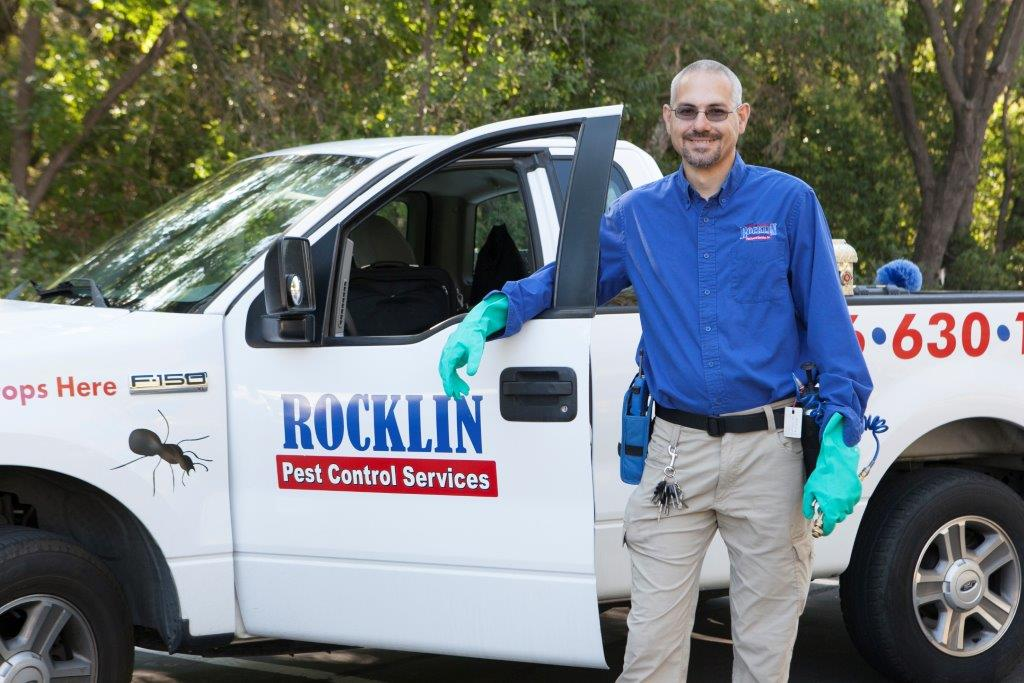 Employee In Pest Control Truck In Rocklin, CA Photo - Rocklin Pest Control