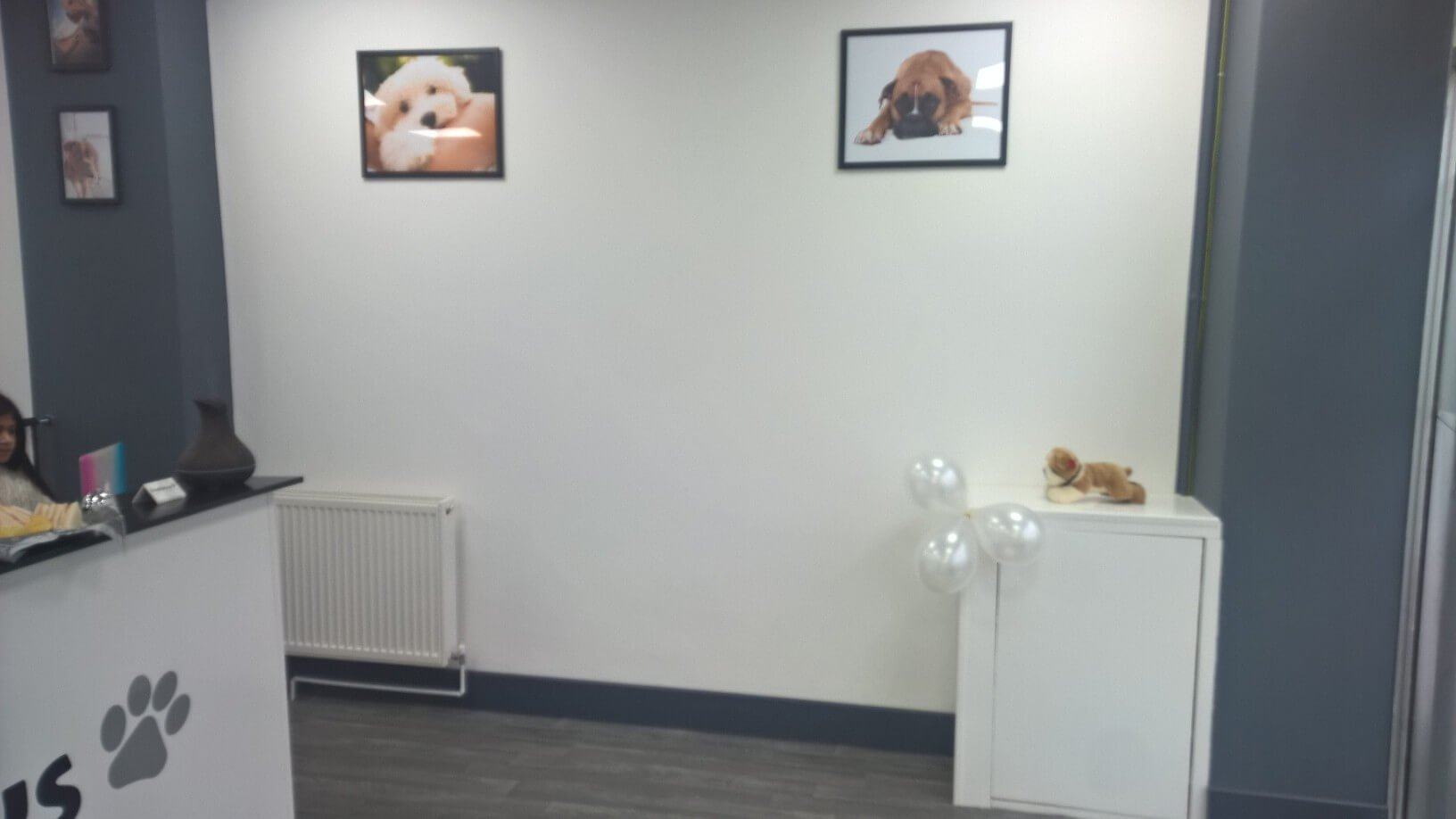 freshpaws front desk area