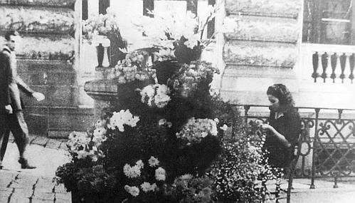Iannoni Fiori storia