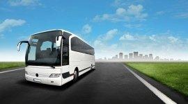 noleggio autobus 56 posti