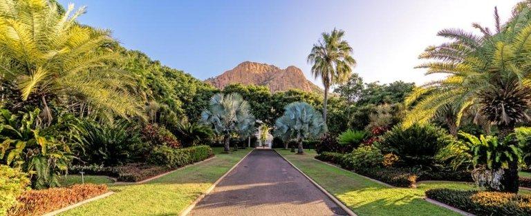 giardini privati e per aziende progettazione e manutenzione