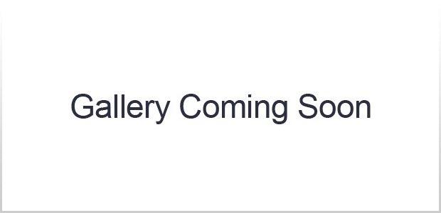 Gallery coming soon