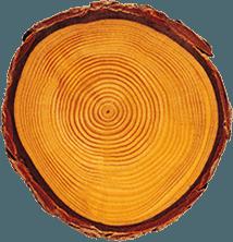 legno lamellare sturno