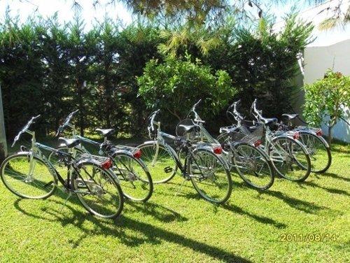 biciclette su erba