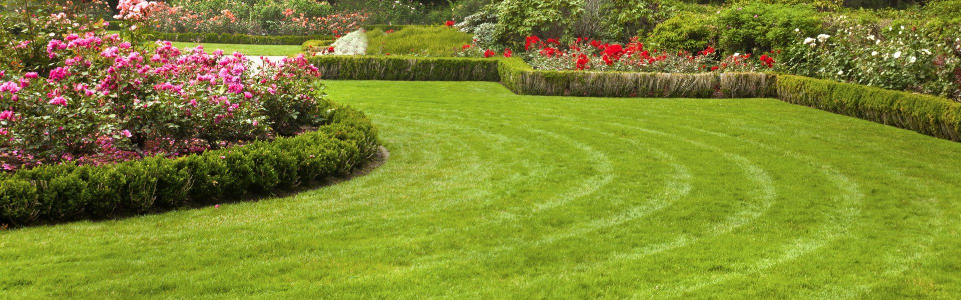 Flower beds curving around a green lawn