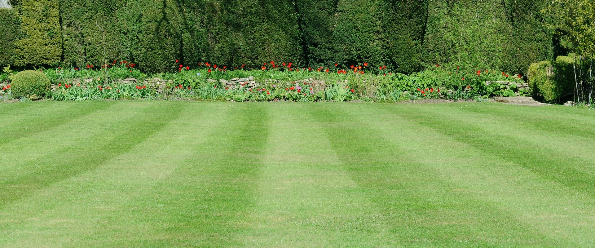 Beds of red flowers at the end of a striped lawn