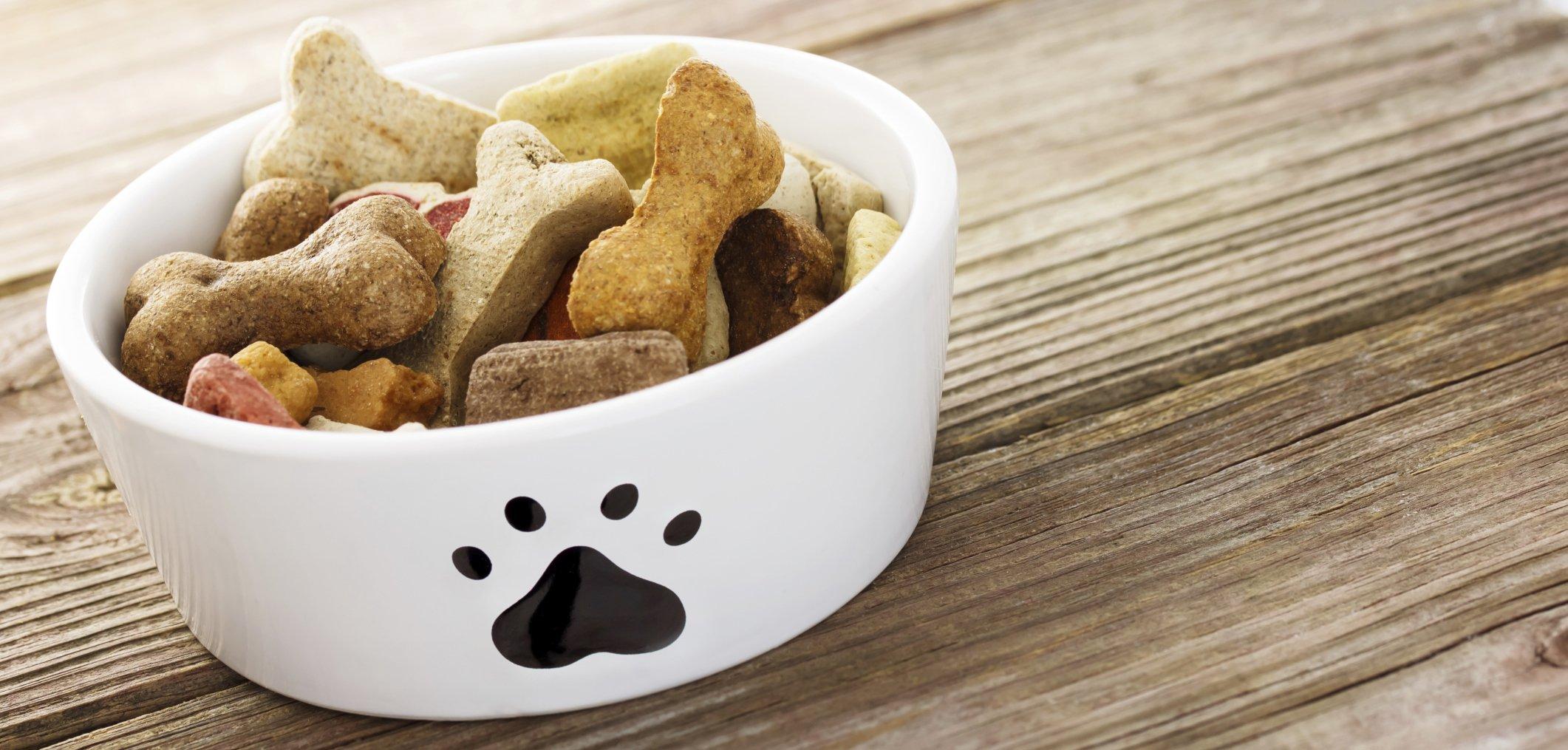 Dog Food Fairfield, CT