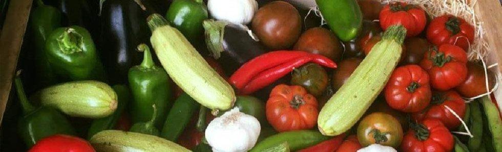 distribuzione frutta e verdura