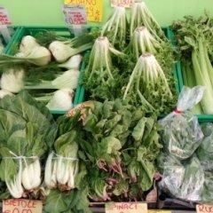 spinaci, bietole, rucola,
