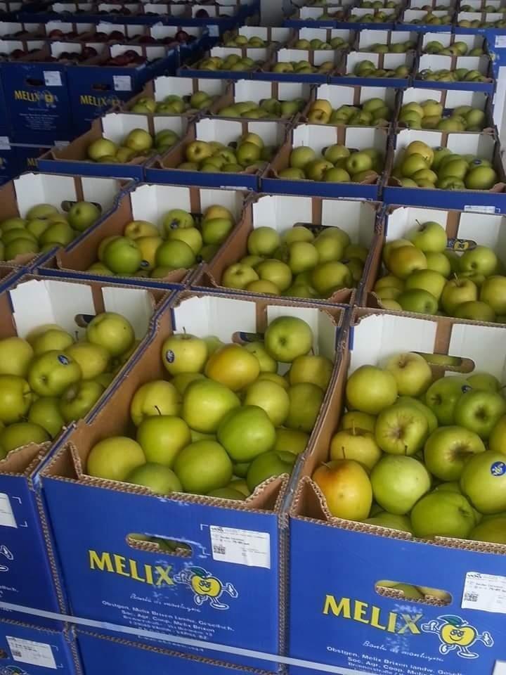 distribuzione frutta e verdura La Sorgente