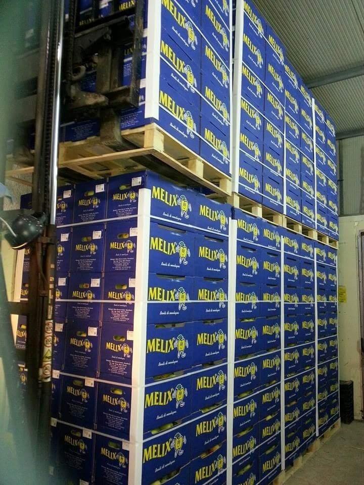 Distribuzione prodotti ortofrutticoli