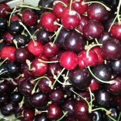 ciliege, frutta al dettaglio,