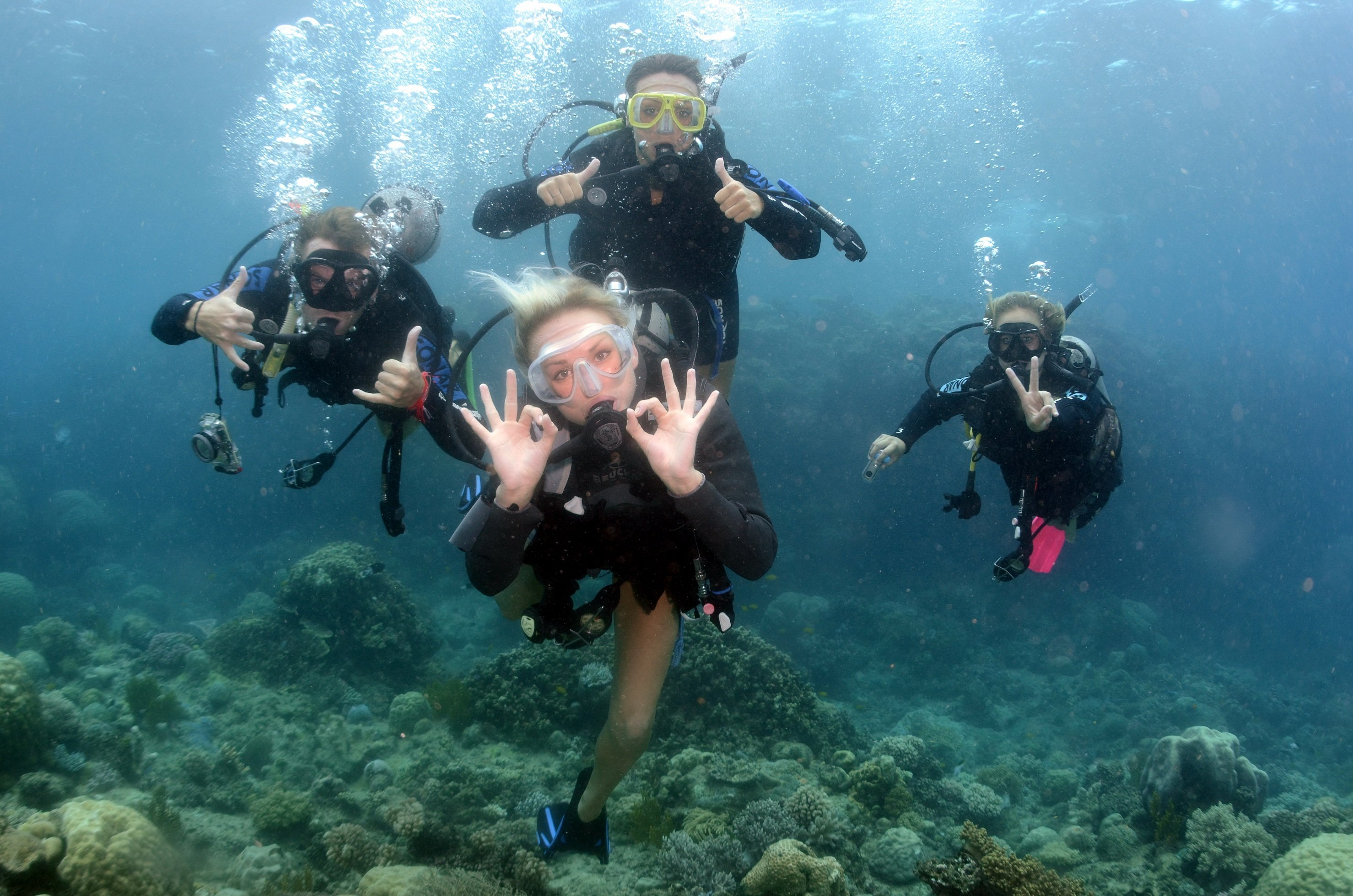 Persian Gulf Diving Tour