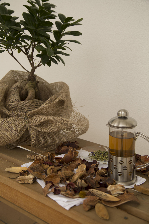 petali secchi sul tavolo con un brocca