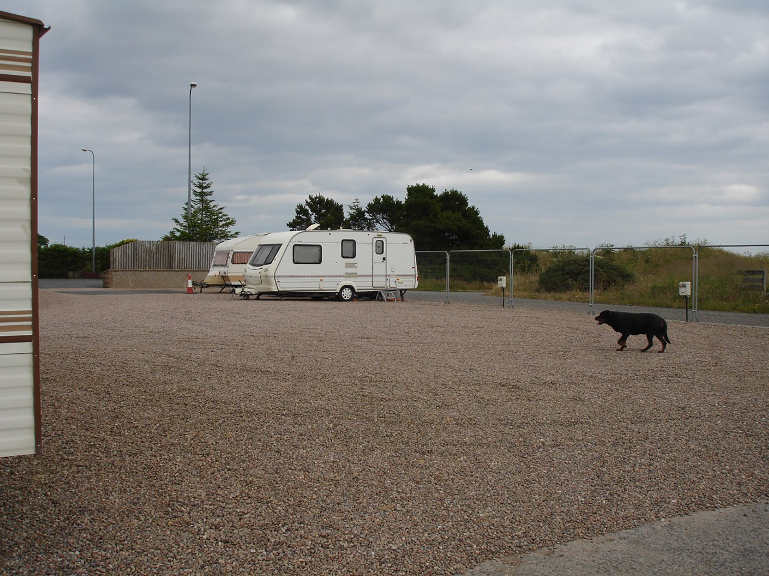 empty parking lot for caravan and a dog