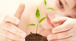 consulenze ecologiche