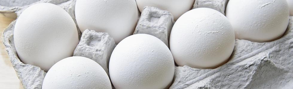 Commercio di uova