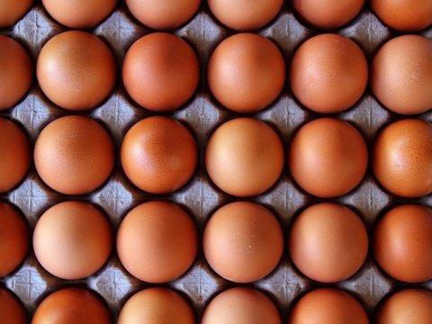 Commercializza uova Cecchini