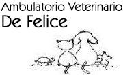 Ambulatorio Veterinario Dr.ssa De Felice