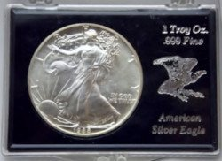 Silver walking liberty coin sold at auction