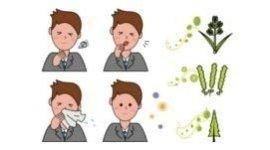 allergie di stagione, allergie da fieno, allergie croniche