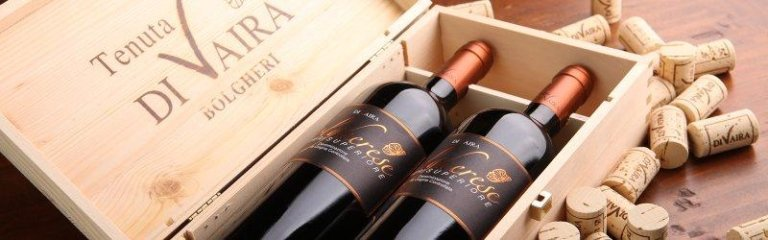 Bolgheri wine