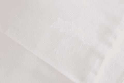 Sheets Fern small