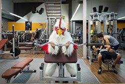 un uomo vestito da gallo che fa degli esercizi in palestra