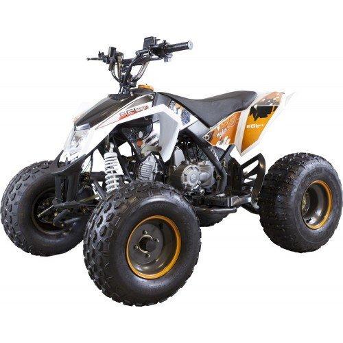 125cc minimax quad
